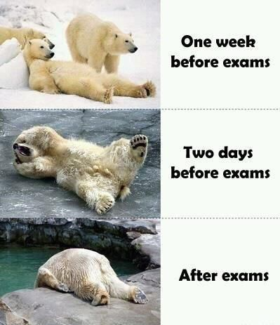 exams timeline